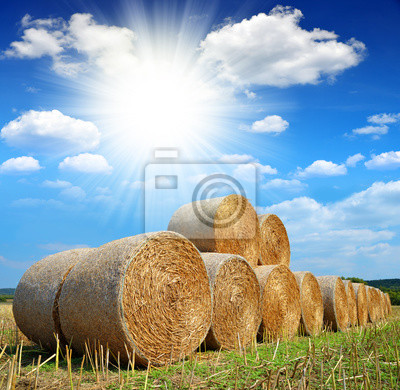 Straw bales on farmland with sunny sky
