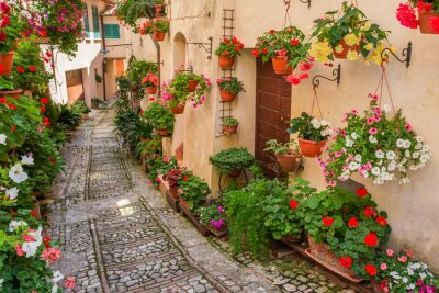 Wall mural Street in small town in Italy in sunny day, Umbria