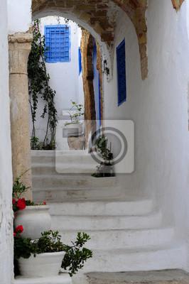 Street of Sidi Bou Said