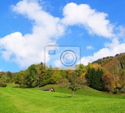 suisse  des vertes prairies