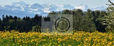 suisse...printemps