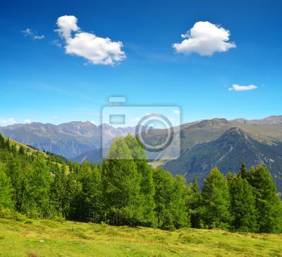 Summer landscape in Swiss Alps near Davos - canton Graubunden.