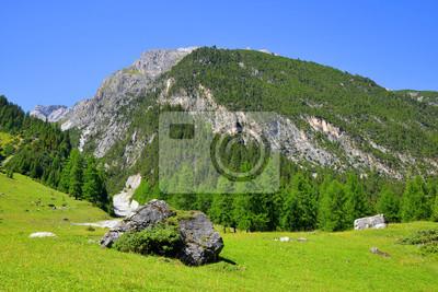 Summer landscape in Switzerland Alps - Park Ela, canton Graubunden.
