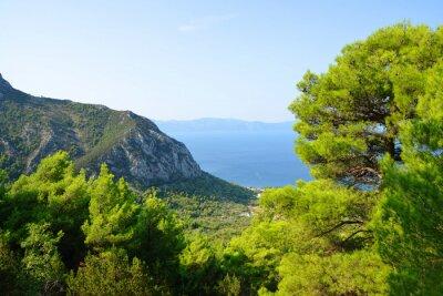 Summer landscape in the Rilic mountain. Riviera Makarska, South Dalmatia, Croatia.