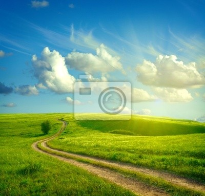 Wall mural Summer landscape with green grass, road and clouds