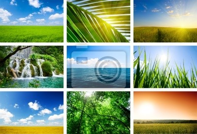summer lanscapes collage