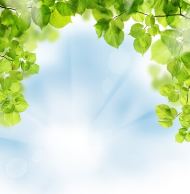 Wall mural Summer leaves on floral greenery background