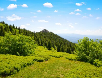 Summit of mountain Grosser Arber in National park Bayerische Wald, Germany.