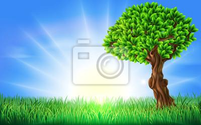 Sunny Field Tree Background