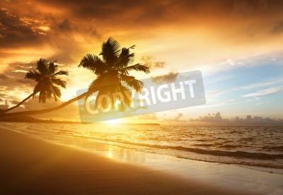 Wall mural sunset on the beach of caribbean sea