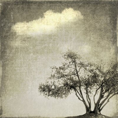 Wall mural Surreal landscape with single tree in sepia tones