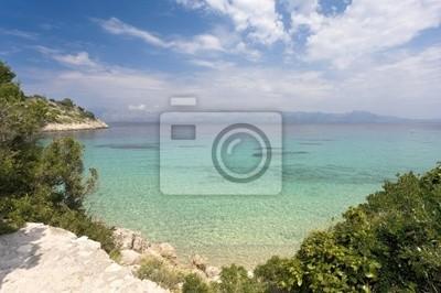 swim in the bay Divna