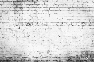 Wall mural Texture. Brick. It can be used as a background