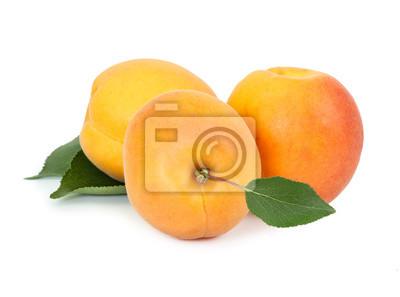Three fresh apricot