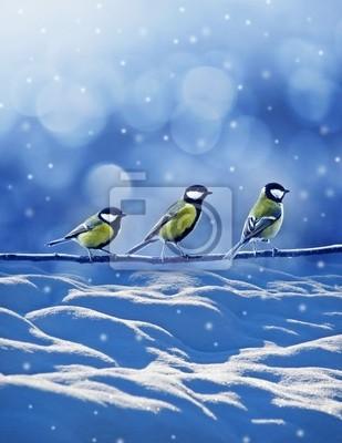three friends birds in winter