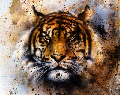 Wall mural tiger collage on color abstract  background,  rust structure, wildlife animals, eye contact.