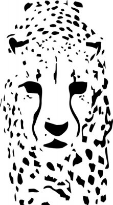 Wall mural tiger pop art black and white