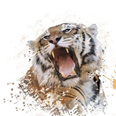 Wall mural Tiger Portrait Watercolor