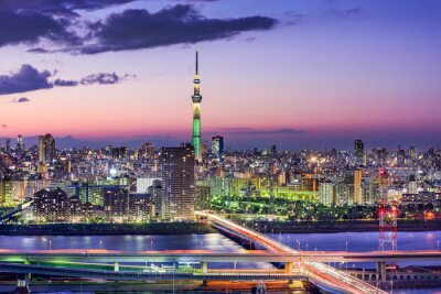 Wall mural Tokyo, Japan Skyline