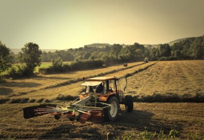 Wall mural tractor
