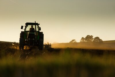 Wall mural Tractor in sunset plowing the field