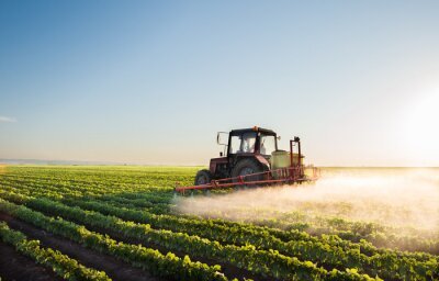 Wall mural Tractor spraying soybean field