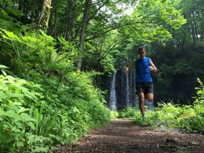Wall mural Trail runner on woodland path
