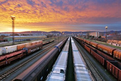 Wall mural Train freight - Cargo railroad industry