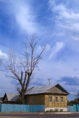tree and home