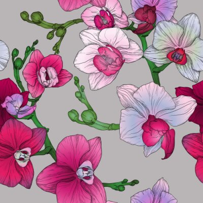 Wall mural tropic floral seamless pattern with hand drawing orchid flowers
