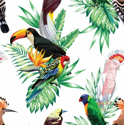 Wall mural tropical birds and palm leaves pattern