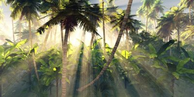 Wall mural Tropical forest in the morning sun, jungle in the fog, palm trees in the haze, 3D rendering