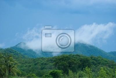 Tropical rain forest during monsoon season
