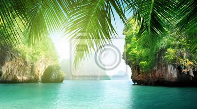 tropical sea and rocks