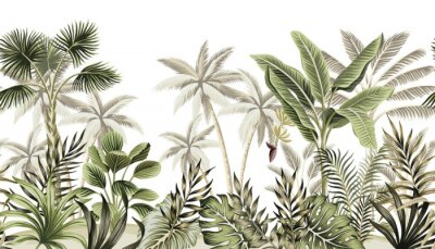 Wall mural Tropical vintage botanical landscape, palm tree, banana tree, plant floral seamless border white background. Exotic green jungle wallpaper.