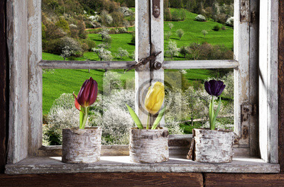 Wall mural Tulpen am Fenster mit Blick in die Landschaft