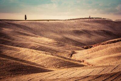 Wall mural Tuscany fields autumn landscape, panorama, Italy. Harvest season