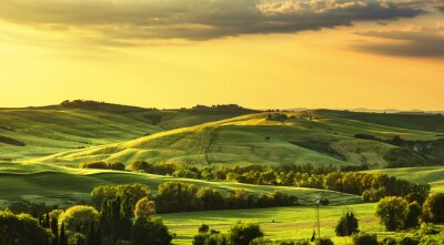 Wall mural Tuscany spring, rolling hills on sunset. Rural landscape. Green