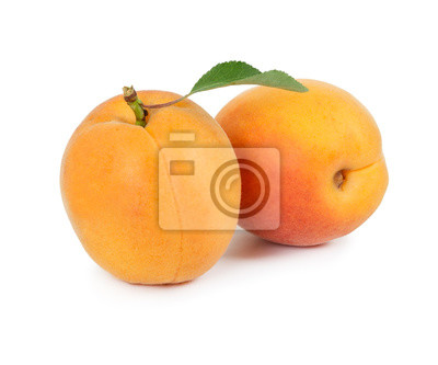Two fresh apricots isolated on white background