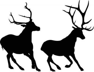 Wall mural two running black deers isolated on white