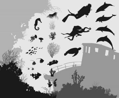 Wall mural underwater