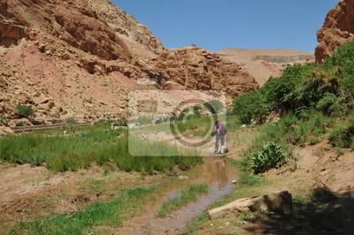 vallée des Roses Haut Atlas Maroc pays Berbère