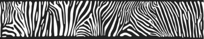 Wall mural Vector background with zebra skin