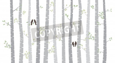 Wall mural Vector Birch or Aspen Trees with Autumn Leaves and Love Birds