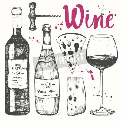 Wall mural Vector illustration with wine glass, corkscrew, bottle, champagne, cheese. Classical alcoholic drink.