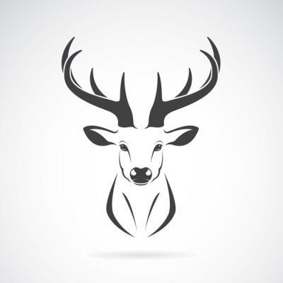 Wall mural Vector image of an deer head design on white background