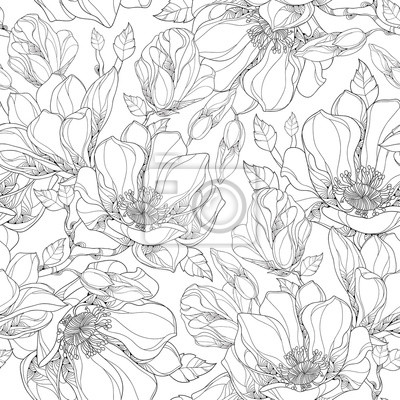 Wall mural Vector seamless pattern with outline magnolia flower, ornate buds and leaves on the white background. Elegance floral background in contour style for summer design and coloring book.