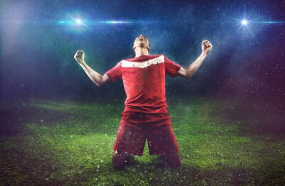 Wall mural Victorious Soccer Player