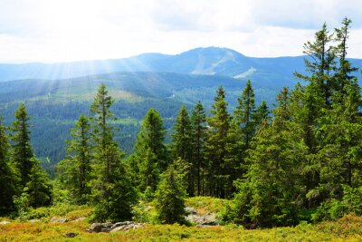View from the top of mountain Zwercheck on the mount Grosser Arber in the National park Bayerischer Wald. Germany.