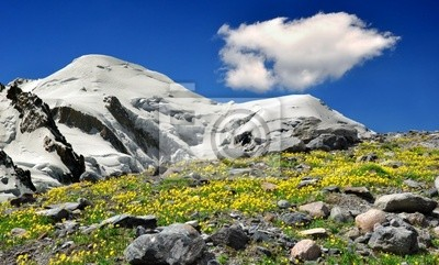Wall mural view of the mountains Mont Blanc-France